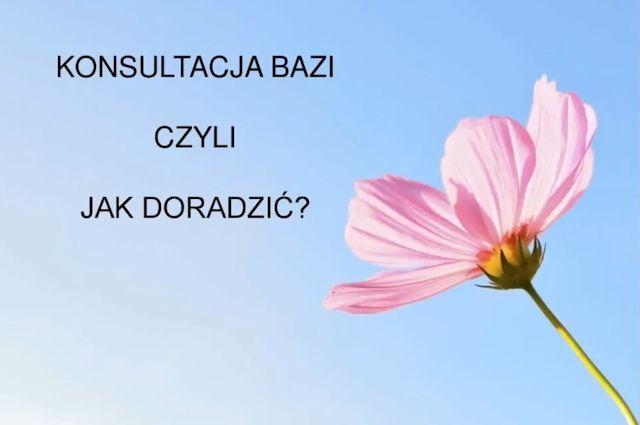 Ba Zi - warsztaty: <br>Jak prowadzić konsultacje?